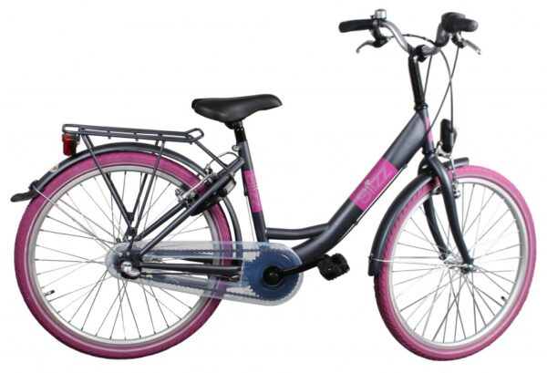 Bike Fun Blizz 20 Inch 33 cm Meisjes V-Brake Matgrijs