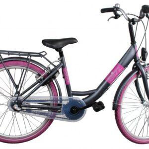 Bike Fun Blizz 24 Inch 39 cm Meisjes 3V V-Brake Matgrijs